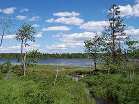 Voyageur Lake Subdivision Hammonds Plains,Nova Scotia